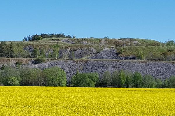 Giidiga retk Tammiku kaevanduse mäele