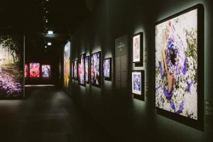 Центр фотоискусства Fotografiska Tallinn