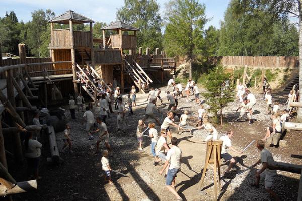 Viikingite Küla Linnuselahing