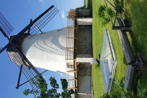 Võiveren tuulimyllyn vierailukeskus