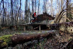Piedzīvojums ar elektriskiem fatbike velosipēdiem Tallinā un Harju apriņķī