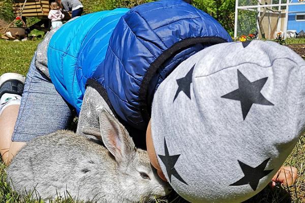 Rabbit Village