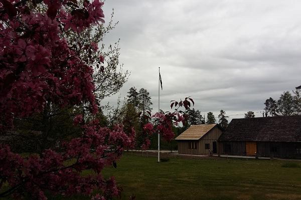 Metsanurme külakeskuse seminariruumid