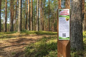 Hiking Trails of Jõulumäe Recreational Sports Centre