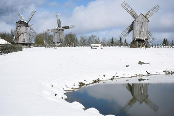 Anglan tuulimyllymäki