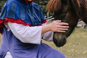 Asvan viikinkikylän eläinpuisto