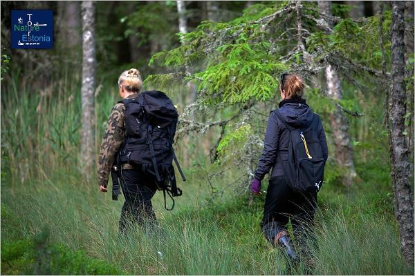 Nature Tours Estonian marja- ja sieniretket Peipsiveeren luonnonsuojelualueella
