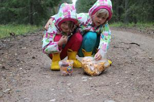 Nature Tours in Estonia – berry and mushroom picking trips in the Peipsiveere Nature Reserve