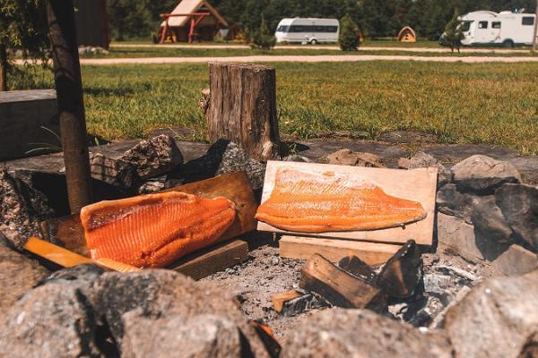 Metsaluige camping and caravan park