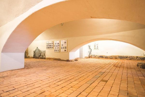 Bibikovi Kultuuriaida seminariruum
