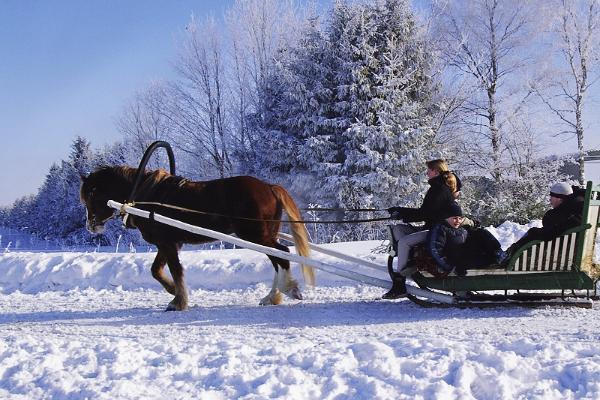 Hotelli Laagnan hevosvaunuajelua talvella