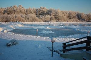 Holiday Village at Laagna Hotel, a pond at winter