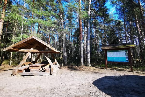 Место для отдыха на лесной тропе Таммисте