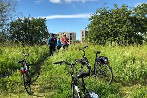 Rattaretk: Anja seiklused Lasnamäel