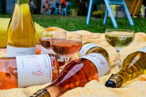 Mamm&Frukt craft wine tasting
