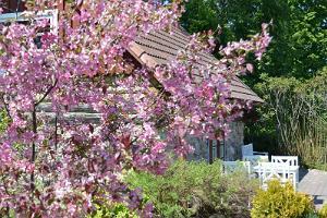 Jalutuskäik Mikko talu Südamete aias koos perenaisega
