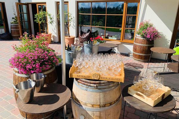 Personaalne veinivalmistamise õpituba Murimäe Veinikeldris