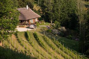 Personāla vīna darīšanas darbnīca Murimē vīna pagrabā