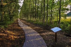 Sagadi-Oandu Metsajuttude rada