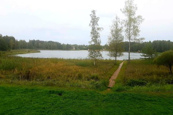 Природная тропа у озера Арби