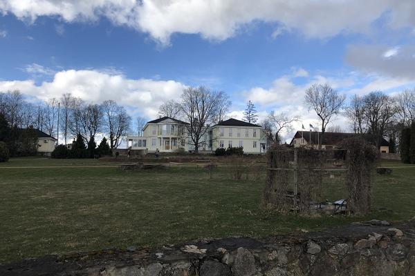 Розарий в поселке Луунья весной
