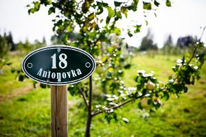 The smell of apples and cultural history at Piesta Kuusikaru Farm in Vändra forest in Pärnu County