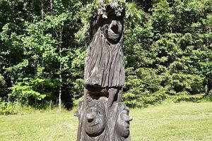 Püsimets ja inimene ning loodussõbralik metsandus Pokumaal
