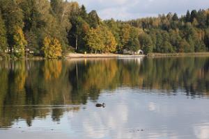 Lake Pühajärv Park