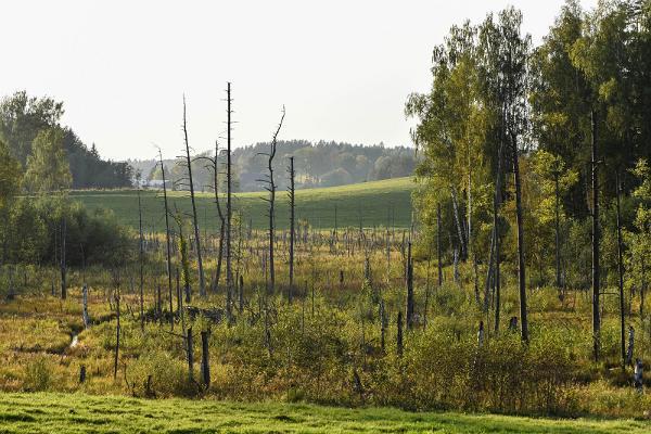 Karula Nationalpark och Natinalparkens Besökscentrum vid insjön Ähijärv