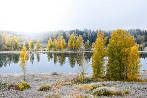 Ööbikuorg valley and Rõuge lakes
