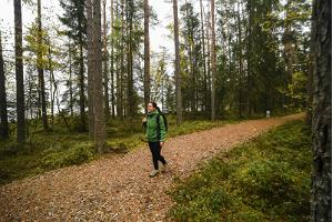 Pullijärve hiking trail