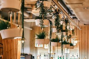 Restaurangen Loft ja Ürdid, inredning