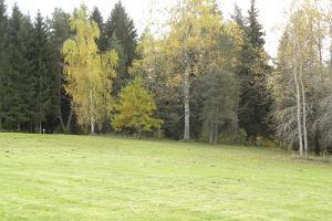 Парк для игры в диск-гольф в Каарепере, на холме Арукюла