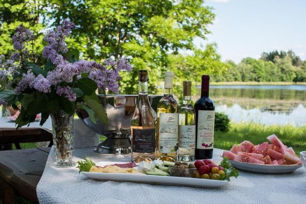 Uue-Saaluse veinitalu tuur