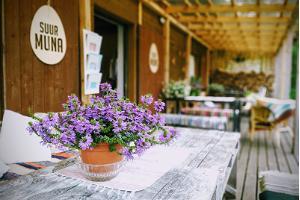 Café Suur Muna