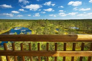 Lahemaa National Park Nature Tour