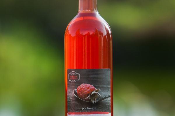 Habajas Degvīna fabrikas pašdarināto vīnu degustācija