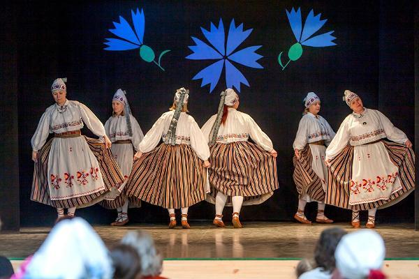 Eesti Vabariigi 103. aastapäeva tähistamine Alutaguse vallas