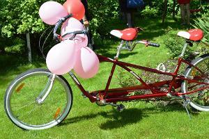 Tande-jalgrattarent Tartumaal