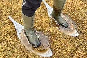 Pārgājieni Mulgimā ar sniega kurpēm Rubinas purvā