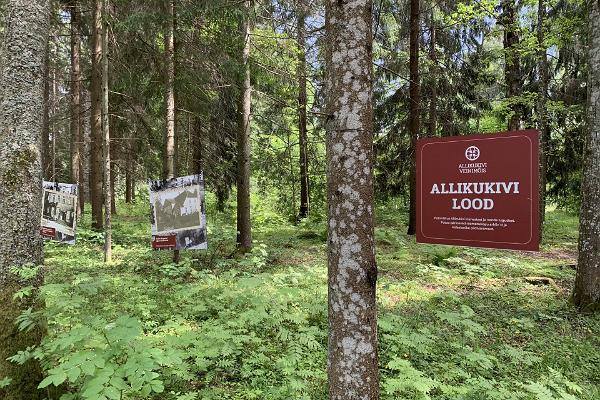 Park Allikukivi