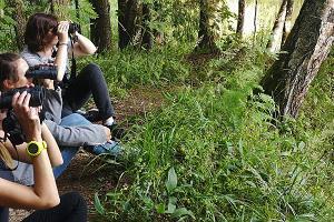 Linnuvaatlus Lõuna-Eestis loodusretkejuhiga