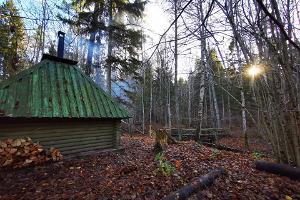 RMK Laiksaaren laaksonpohjametsän luontopolku