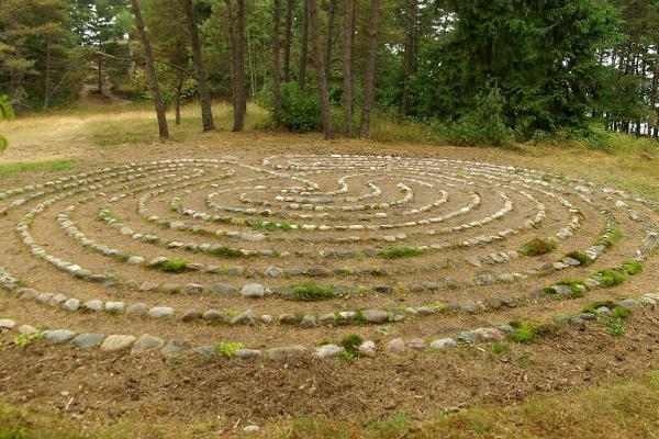 Aegna poolepäevane tuur digigiidiga: kivikülv ja iidne labürint