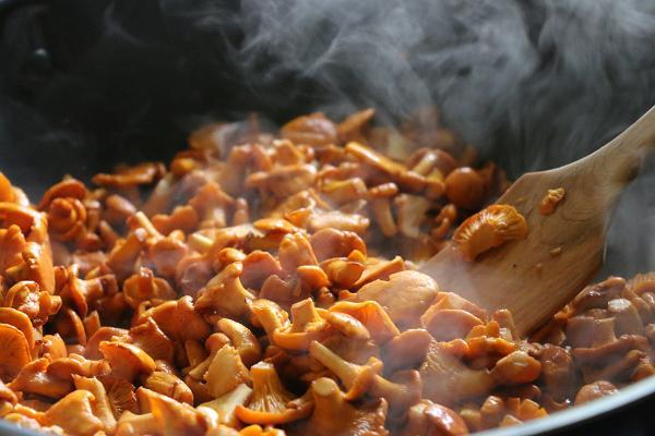 Mushrooms of setomaa