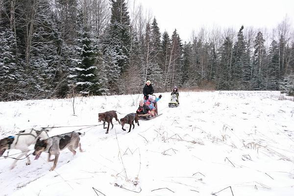 Hundslädturer med Mutimuudi draghundar