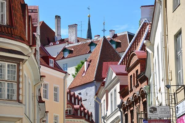 Kierros Tallinnan vanhakaupungissa ja Kadriorgissa
