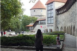 Guided day trip in Tallinn