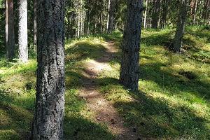 Ruu maastikukaitse ala
