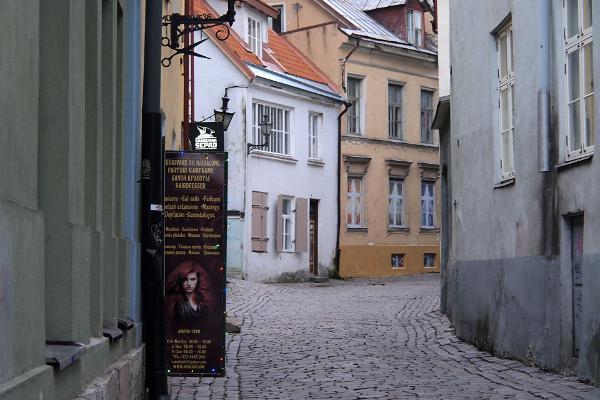 Opastettu kierros Tallinnan vanhassakaupungissa ja Kadriorgissa